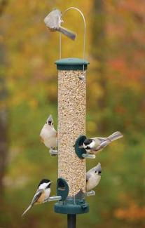 Quick-Clean Seed Tube Bird Feeder Size: Large, Finish: