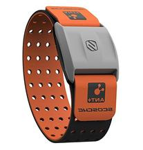 Scosche RHYTHM+ Heart Rate Monitor Armband - Orange -