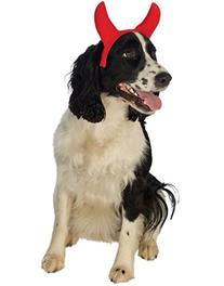 Rubies Costume Company Devil Horns Pet Costume Accessory,