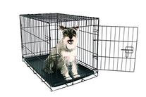 Carlson Secure and Compact Single Door Metal Dog Crate,