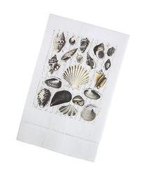 Sepia Toned Seashells Printed Linen Tea Towel, Set of 4