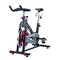 Sunny Health & Fitness Chain Drive Indoor Cycling Bike, Grey
