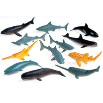Mini Sharks and Whales - Count