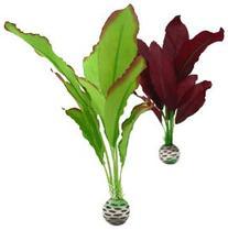biOrb Silk Plant Pack, Medium, Purple/Green