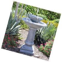 Best Choice Products Solar Power 2 Tier Weathered Stone Bird