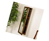 Sophia Wall-Mount Jewelry Mirror-Warm Brown Walnut