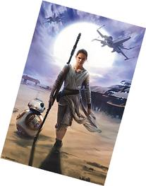 """Star Wars The Force Awakens, Rey, 22"""" x 34"""", Wall Poster"""