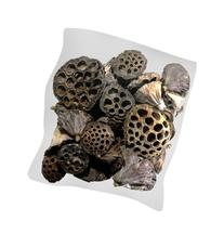 SuperMoss  40-Piece Lotus Pods, Brown, Mixed