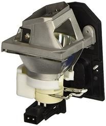 OPTOMA TECHNOLOGY Replacement Projector Lamp for TX542/EX542