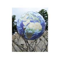Earth Ball Book