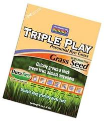 Triple Play Rye Grass Seed 3 Lb