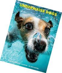 Underwater Dogs 2015 Engagement Calendar