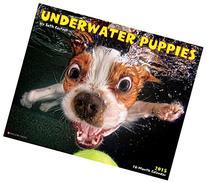 Underwater Puppies 2015 Wall Calendar