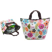 Dxhycc Waterproof Picnic Lunch Bag Lunch Box Tote Insulated