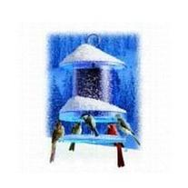 Songbird Essentials SEAWFFF734 Clear 4qt All Weather Feeder