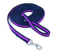 Shires Web Padded Lunge Line