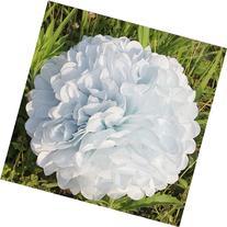 Vktech 10PCS Wedding Tissue Paper Flower Ball Paper Pom Pom