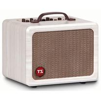 ZT Amplifiers Lunchbox Acoustic Guitar Amp